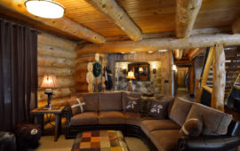 Log Cabin Lower Level