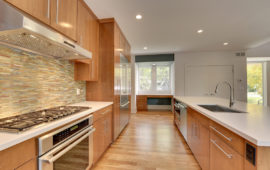 Modern Kitchen Design MN
