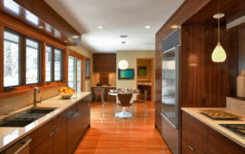 Modern Kitchen Remodel MN